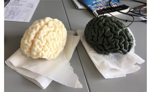 my brain, along with my coworker's brain, fresh out of the printer!